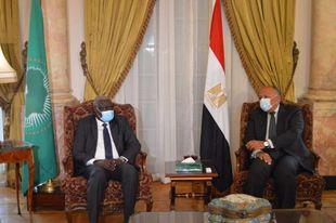 صورة وزير الخارجية يلتقي برئيس مفوضية الاتحاد الأفريقي