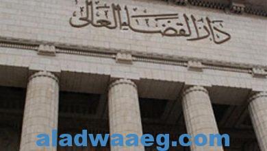 صورة جنايات القاهرة الحكم بالسجن المشدد 3 سنوات وغرامة 50 ألف جنيه