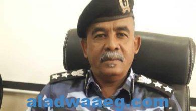 صورة مدير أداره مكافحة التهريب بولاية النيل الابيض عن عدد من العربيات غير مقننه
