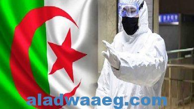 صورة صحة الجزائر تعلن تسجيل إصابات جديدة بفيروس كورونا