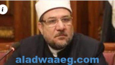 صورة وزير الأوقاف: تطور غير مسبوق للدولة في افتتاح المساجد