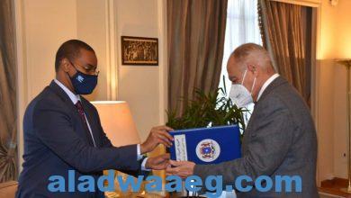 صورة أبوالغيط يتسلم أوراق اعتماد السفير إلياس شيخ عمر مندوبا للصومال بالجامعة العربية