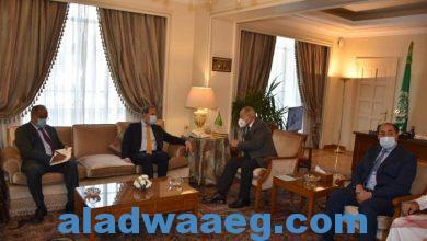 صورة أبو الغيط: العلاقات بين باكستان والدول العربية تاريخية وترتكز على المصالح المشتركة