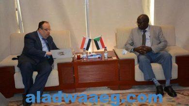 صورة وزير الطاقة والنفط يبحث مع السفير المصري عدداً من المشروعات المشتركة