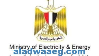 صورة 320 مليون جنيه لتطوير شبكة الكهرباء بمحافظة الفيوم