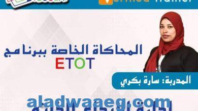 صورة منصة تلوجيا تقدم وجبة جديدة للعالم العربي .. إدارة الإبداع الذاتي