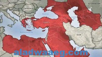 صورة أحلام دولة الخلافة التركية فى الشرق الأوسط الجديد