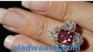 صورة سرقة مجوهرات الأميرة الأردنية من قصرها بلندن