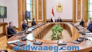 صورة السيد الرئيس يوجه باستعادة المكانة العالمية للقطن المصري