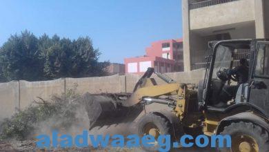 صورة جهود الوحدة المحلية لمركز ومدينة الواسطى