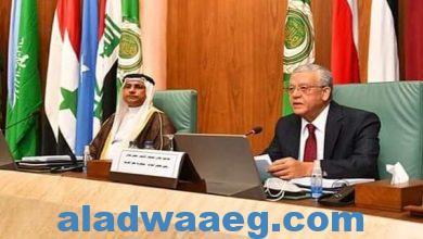 صورة العسومي : شراكة جديدة مع مجلس النواب المصري تعزز خدمة القضايا العربية