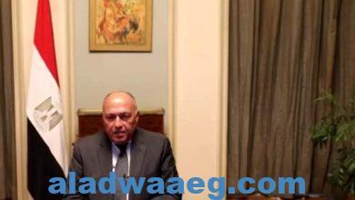 صورة وزير الخارجية يشارك في الجلسة الافتتاحية للمؤتمر الإقليمي الأول من أجل الهجرة الآمنة والمنظمة والنظامية