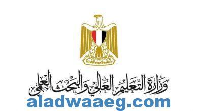صورة فوز مصر برعاية المؤتمر الدولي للاتحاد العالمي للتعليم الطبي 2022