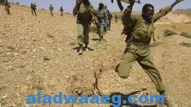 صورة العفو الدولية تكشف عن مجزرة ارتكبها جنود إريتريين