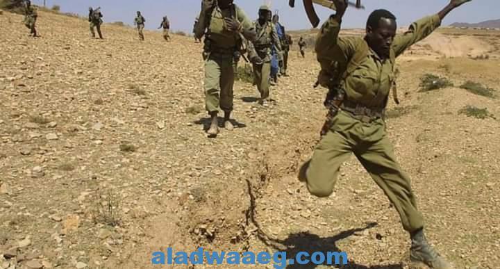 العفو الدولية تكشف عن مجزرة ارتكبها جنود إريتريين