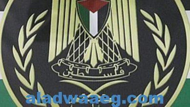 """صورة الإمارات ترسل لقاحات """"كورونا"""" إلى قطاع غزة وسط ترحيب فلسطيني"""