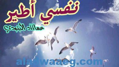 صورة نفسي أطير .. بقلم. عماد الأبنودي