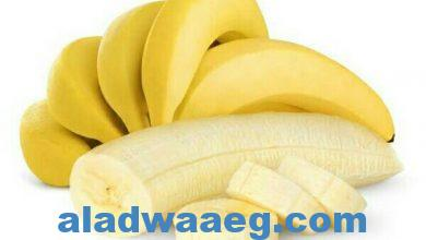 صورة طعام الفلاسفة…الموز