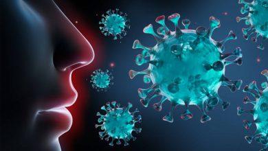 صورة طرح لقاحات مضادة لفيروس كورونا