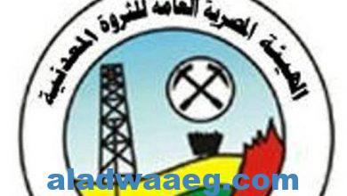 صورة الهيئة المصرية العامة للثروة المعدنية تعلن إغلاق مزايدة البحث عن الذهب