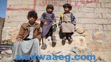 صورة الأمم المتحدة: 400 ألف طفل في اليمن معرضون لخطر الموت جوعا