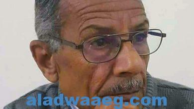 صورة جريدة الاضواء تهنئ الاعلامى الكبير الأستاذ غريب سعد