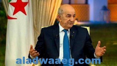 صورة الرئيس الجزائري يعود إلى بلاده بعد رحلة علاجية بألمانيا استمرت لنحو الشهر