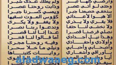 صورة سلوا التاريخ عن مصر .. الشاعر محمد منصور