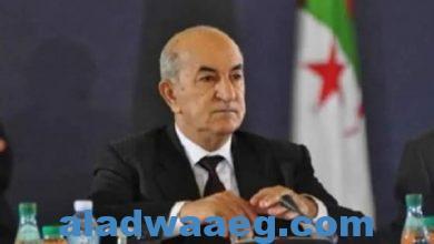 صورة الرئيس الجزائري ينفي وجود خلاف بين مؤسسة الرئاسة وبين الجيش