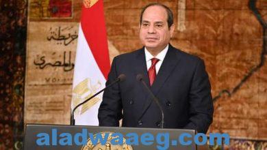 صورة الرئيس عبدالفتاح السيسي يصدق علي قانون للبحث عن الغاز في البحر المتوسط