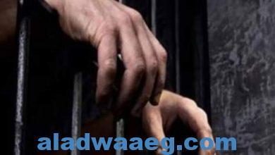 صورة حبس متهمين بالسويس بتهمة خطف حقائب السيدات ومشغولات ذهبية