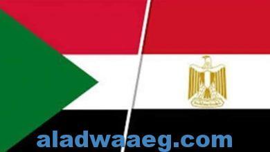 صورة الإستثمارات السودانية بمصر برأسمال 433مليون دولار