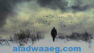 صورة قرار الرحيل.. بقلم إبراهيم الجبوري