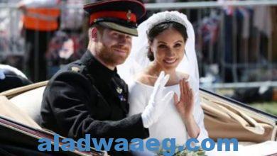 صورة موظفي القصر الملكي البريطاني يطلقون لقب الرهينة علي حفيد الملكة