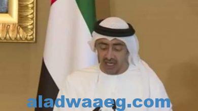 صورة وزير الخارجية الإماراتي :قانون قيصر هو التحدي الأكبر في سوريا