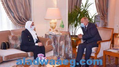 صورة وزيرة الصحة تلتقي الأمين العام لجامعة الدول العربية لبحث سبل استمرار تقديم الدعم الطبي للدول العربية