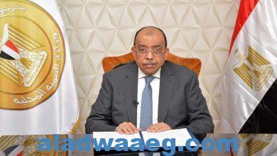 صورة في إطار عضوية مصر في منظمة المدن والحكومات الأفريقية