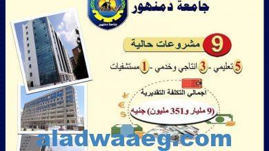 صورة المشروعات التنفيذية لتطوير الجامعات الحكومية