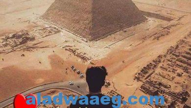 صورة كل عام وأنتي سيدة الأكوان بامصر