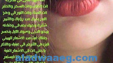 صورة الشاعر العربي الكبير طارق فايز العجاوي