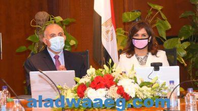 صورة وزيرة الهجرة : واجبنا تحصين الشباب بالمعلومات الموثقة من مصادرها الرسمية