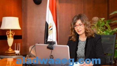 صورة وزيرة الهجرة تعقد الاجتماع الثالث لمبادرة «مصرية بـ100 راجل» بمشاركة رئيسة المجلس القومي للمرأة