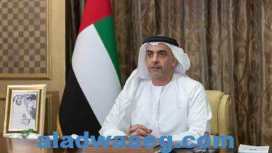 صورة سيف بن زايد يترأس وفد الدولة في أعمال مجلس وزراء الداخلية العرب