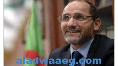 """صورة رئيس """"حركة مجتمع السلم"""" الجزائري يصف سعدي الرئيس السابق للتجمع من أجل الثقافة بالكاذب"""