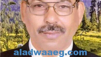 صورة أبو زيد الهلالي .. بين تزييف الحقيقة وحقيقة الزيف