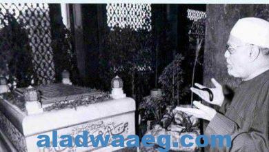 """صورة تعرف على الرؤيا التي رأها الشيخ""""الشعراوي"""" عن الرئيس """"جمال عبد الناصر""""؟"""
