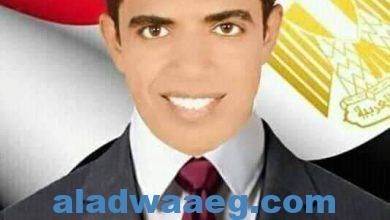صورة محمد الشهابي.. شاب كرس حياته لخدمة الأخرين