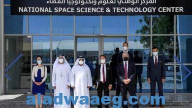 صورة بحث سبل التعاون الثقافي والأكاديمي بين فرنسا وجامعة الإمارات