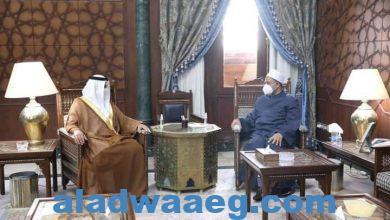 صورة السفير الإماراتي يشيد بالدور المحوري الذي يقوم به شيخ الازهر في ترسيخ قيم السلام والأخوة الإنسانية