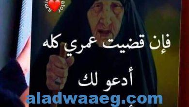 صورة فراق الأحبة.. ابراهيم الجبوري